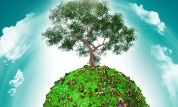 L'illuminazione nell'era della green economy